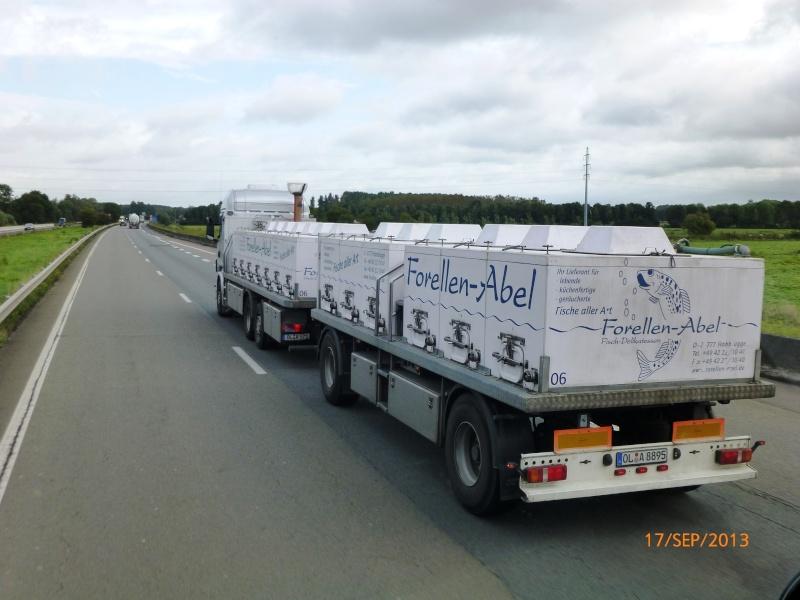 Transport de Poissons vivants Papy_153