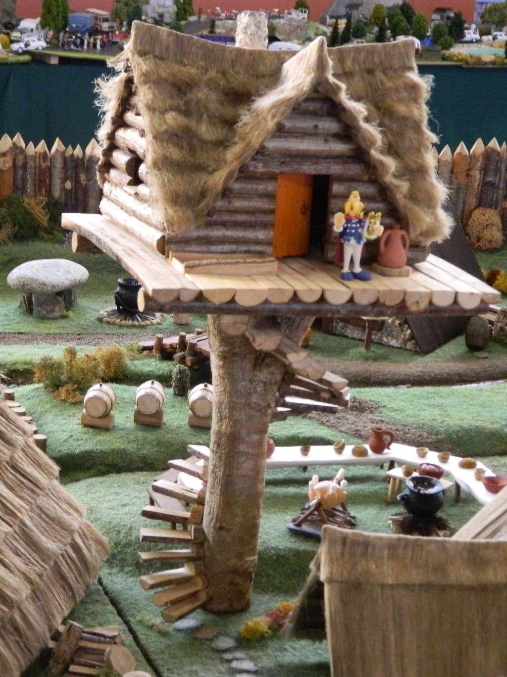 Le Village d'Astérix le Gaulois au 1/40  Dscn3015