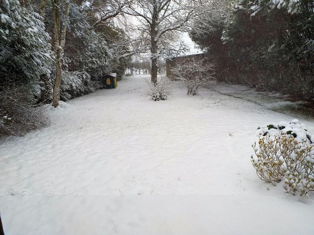 La neige tombe  Neige_10