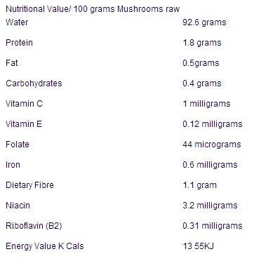 Les champignons Mushro10