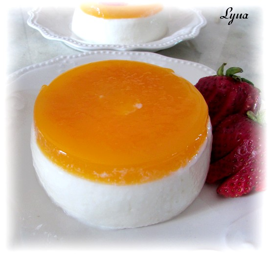 Panna cotta légère à l'orange Panna_10