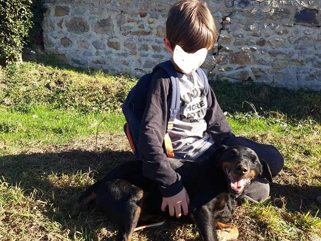 Re: DINO, x jagd terrier 11 ans -  Spa de la Region Creusotine à Marmagne (71)   Inked510