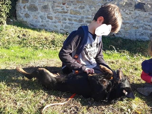 Re: DINO, x jagd terrier 11 ans -  Spa de la Region Creusotine à Marmagne (71)   Inked512
