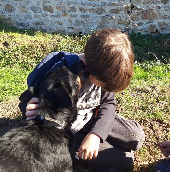 Re: DINO, x jagd terrier 11 ans -  Spa de la Region Creusotine à Marmagne (71)   Redim_11