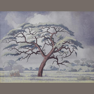 The Baobab by Pierneef Image411