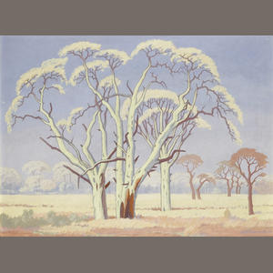 The Baobab by Pierneef Image910