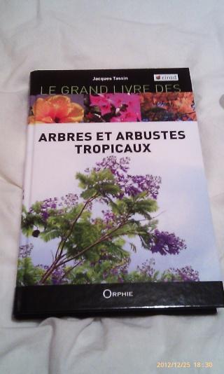 Guides des milieux naturels, des plantes tropicales, arbres et arbustes tropicaux Noel_014