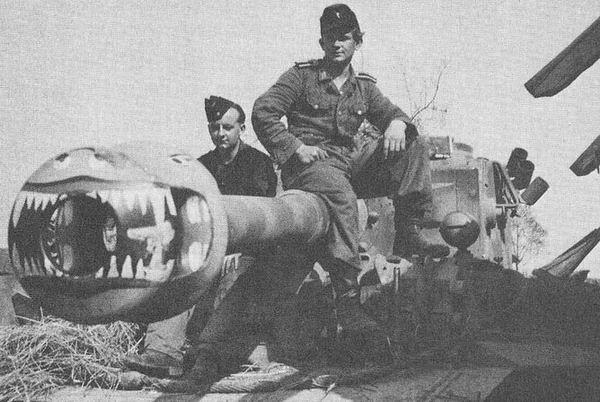 Tiger Jaws Panzer13