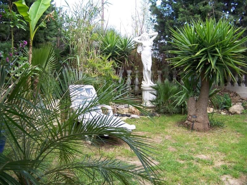quelques photos anciennes de mon jardin avant l'invasion des pictus 100_6811
