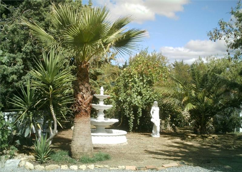 quelques photos anciennes de mon jardin avant l'invasion des pictus Imag0010