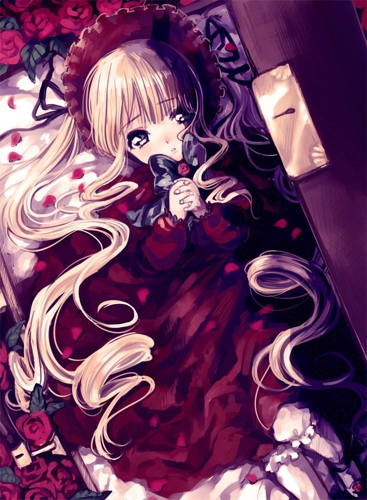 Je veux ... Shinku14