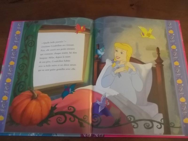 [Collection Press] N° 1 Princesses Disney - Hachette - Mars 2013 - Page 2 100_5443