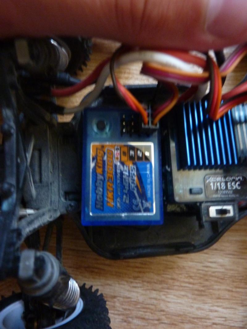 Mini T Losi Team P1050921