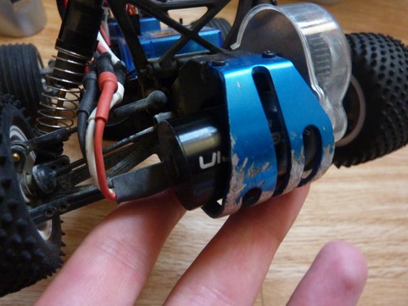 Mini T Losi Team P1050922