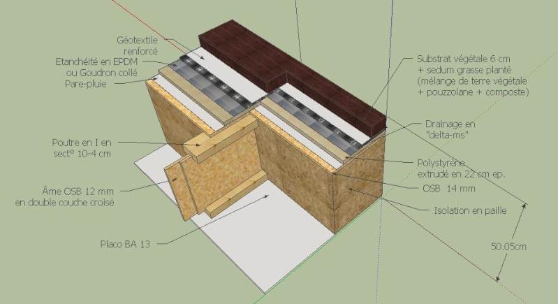 longueur maxi poutres en I - Page 4 Coupe_10