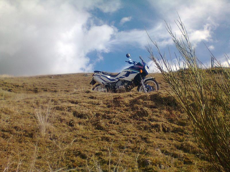 Ballade sur le plateau du Velay ! Photo012