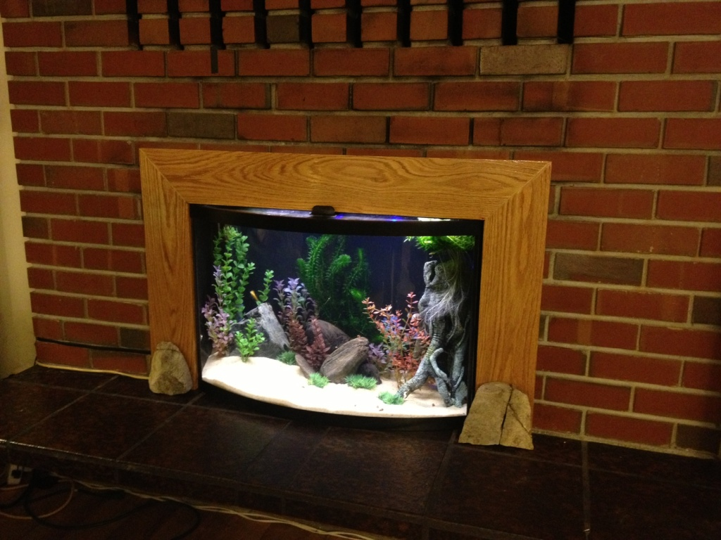 PokeSephiroth's Fireplace 36 Gallon Bow Front Tank (Finished Project) - Page 2 Photo_18