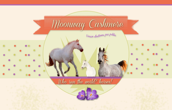 Moonway Cashmere