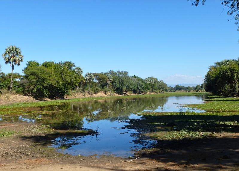 Lower Zambezi Miscellany P1000311