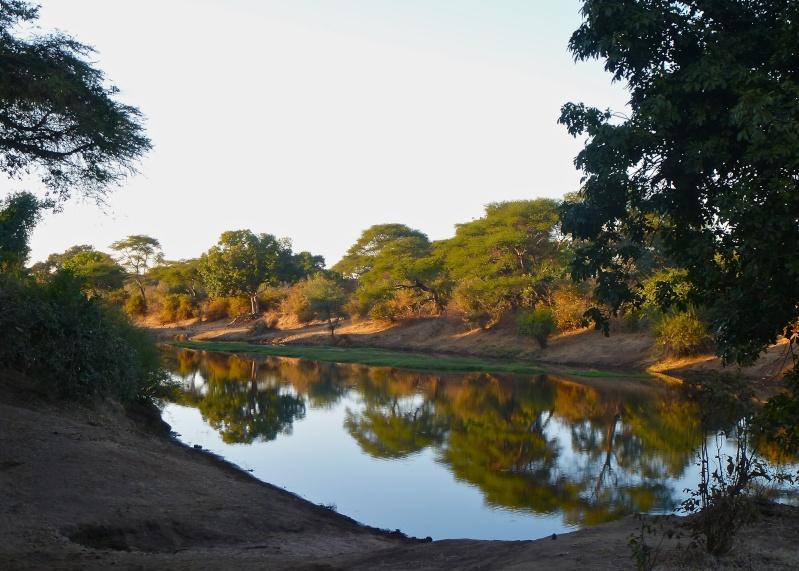 Lower Zambezi Miscellany P1000312