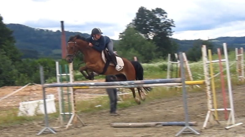 [[ Le cheval idéal n'est pas le cheval parfait, c'est juste celui dont on n Captur11