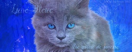 Lune Bleue [Kit] Signa_15
