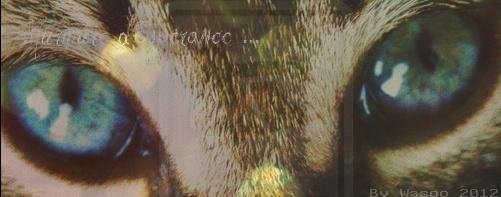 Murmure d'Espérance [Kit] Signa_33