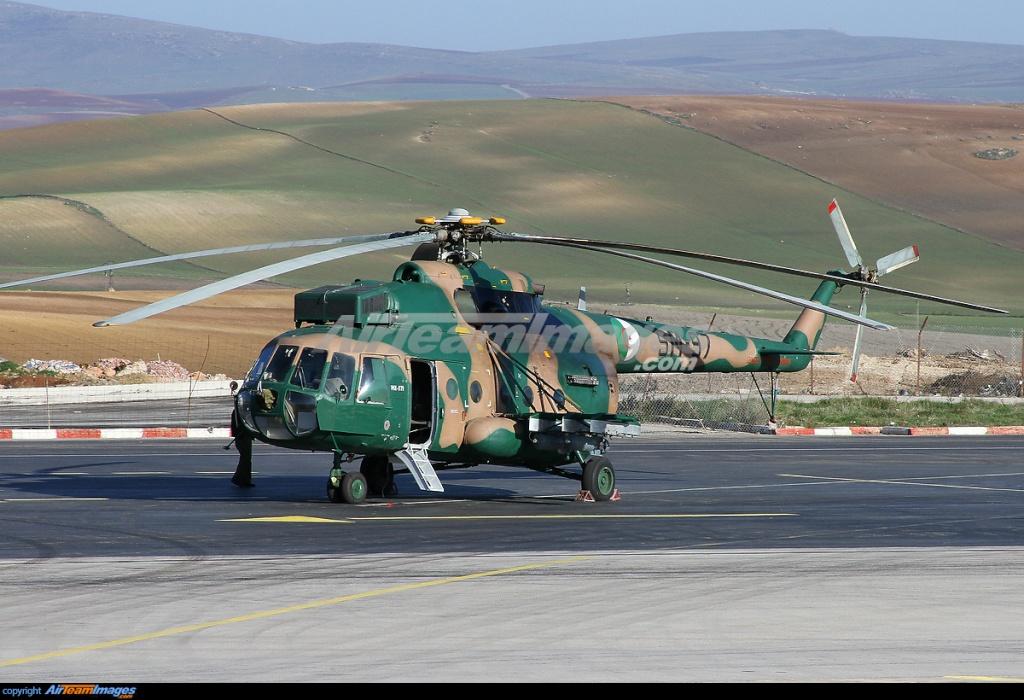 Argelia - Página 2 13877410