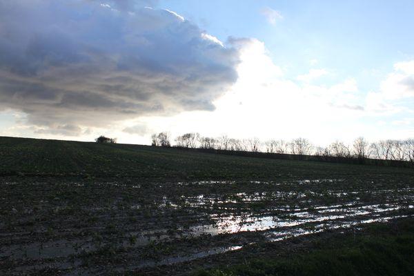 Après la pluie, le beau temps! Img_3011