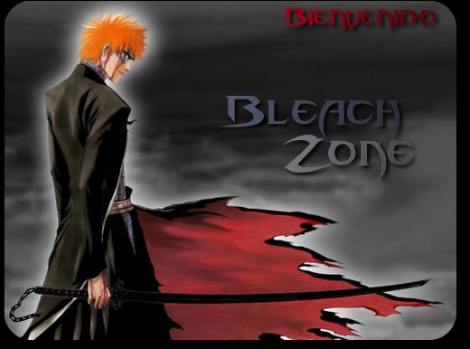 BleachZone - Portal Logo_o10