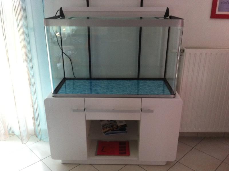 Aquarium de ma TSS Img_0410