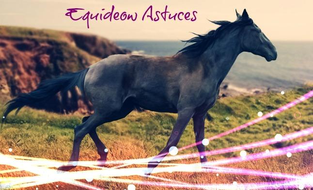 Equideow astuces