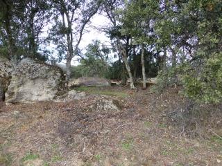El destierro de Chapineria