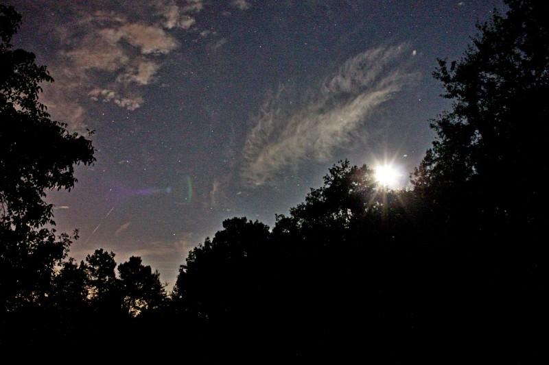 A la lumière de la Lune ..... et de Montauban Img_0915