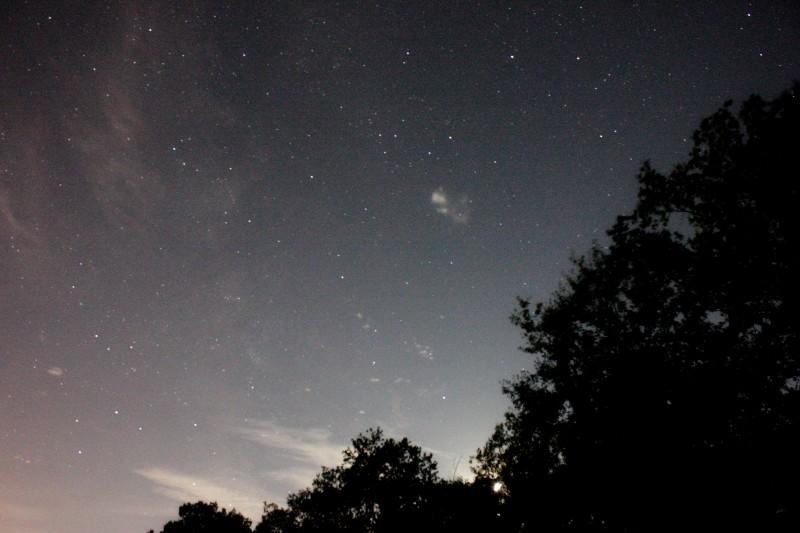 A la lumière de la Lune ..... et de Montauban Img_1010