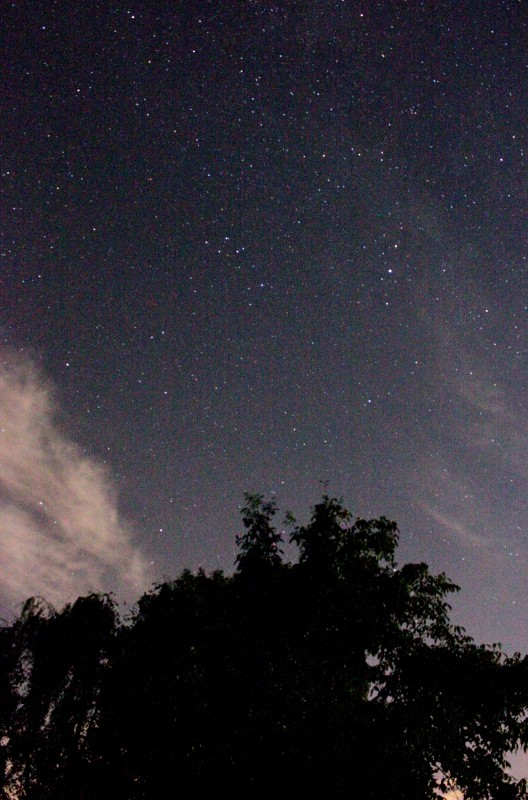 A la lumière de la Lune ..... et de Montauban Img_1012
