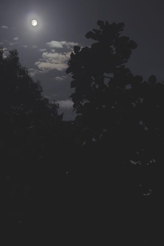 A la lumière de la Lune ..... et de Montauban Laphot10