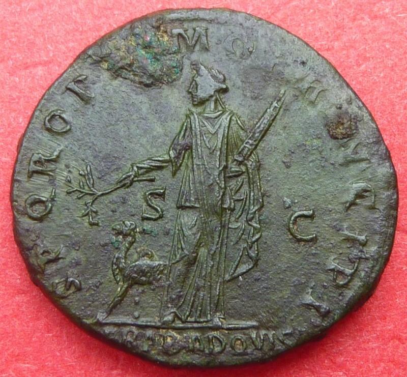 Les roy... romaines de Punkiti92 - Page 9 P1180511