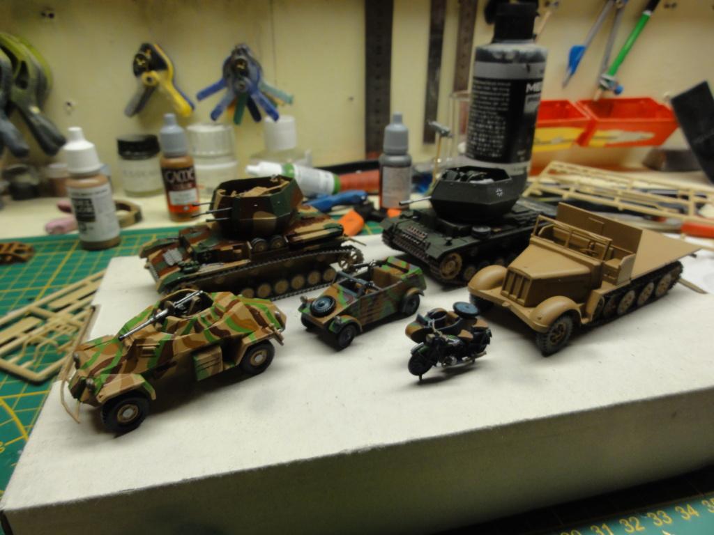 1er diorama avec blindés allemands au 1/72 - Page 3 Dsc00654