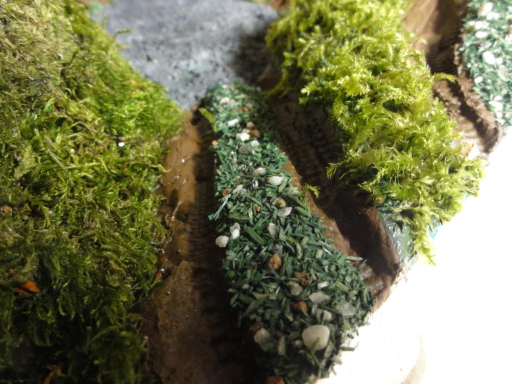 1er diorama avec blindés allemands au 1/72 - Page 6 Dsc00777
