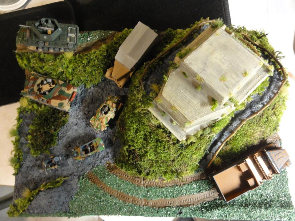 1er diorama avec blindés allemands au 1/72 - Page 6 Dsc00780