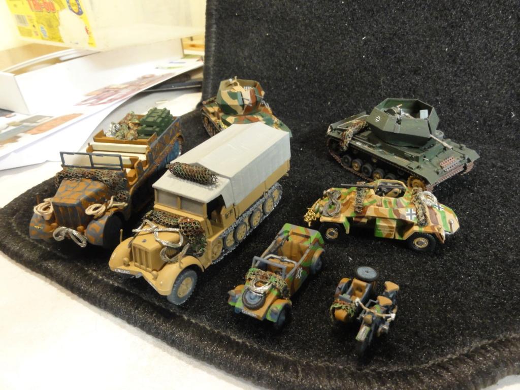 1er diorama avec blindés allemands au 1/72 - Page 7 Dsc00789