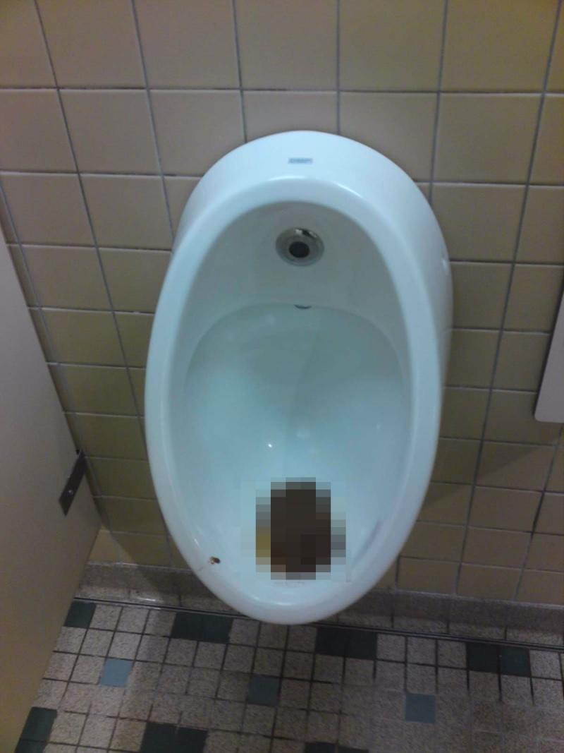 La propreté des toilettes dans le resort - Page 13 Caca10