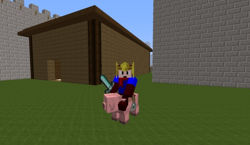 Mes création minecraft 2013-019