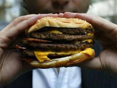 Que contiennent vraiment nos hamburgers ? 320