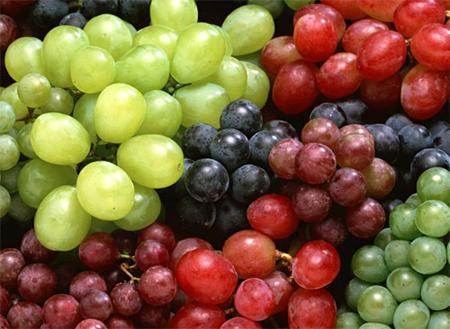 Cure de raisins Jus-ra10