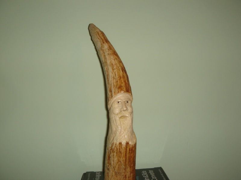 Sculptures sur Panache d'orignaux Dsc06416