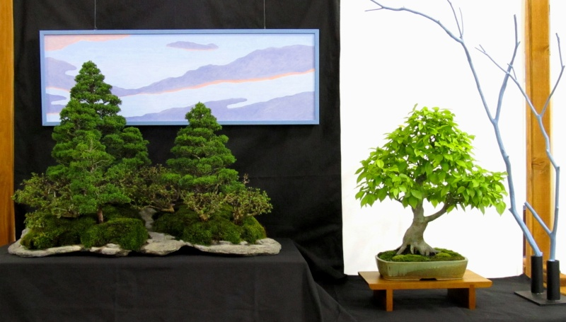 American Bonsai at the NC Arboretum Arbore10