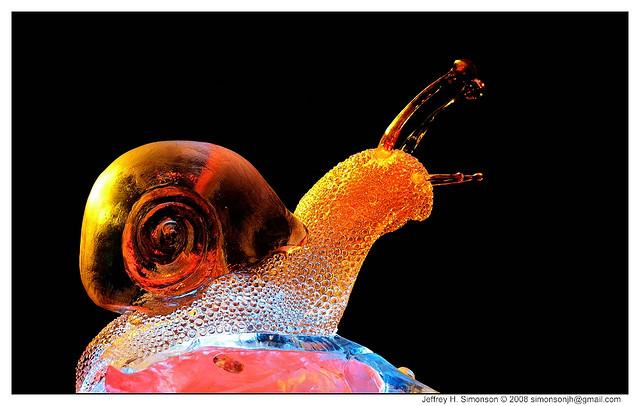 escargots pour de rire 23084310