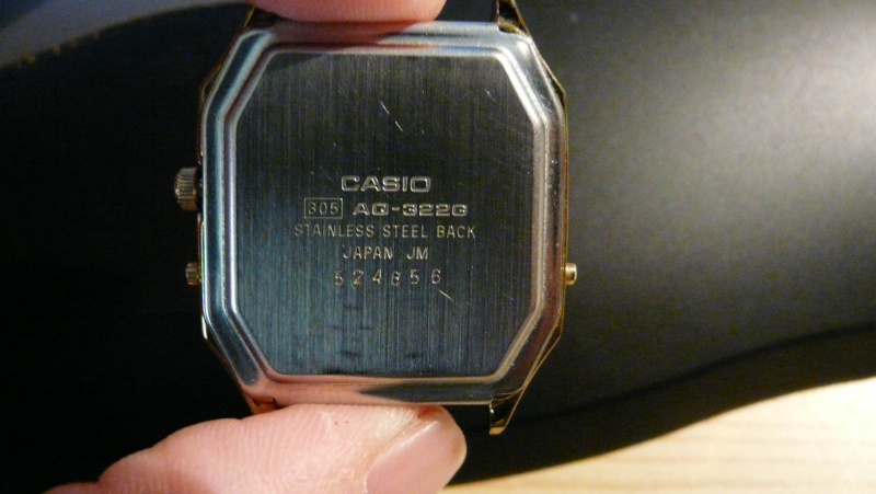 Feu de vos Casio P1030512